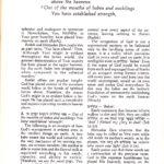 Tehillim,Psalms   Volume 1 1-30